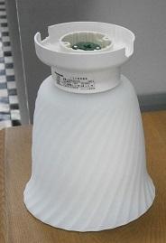 Pa050019